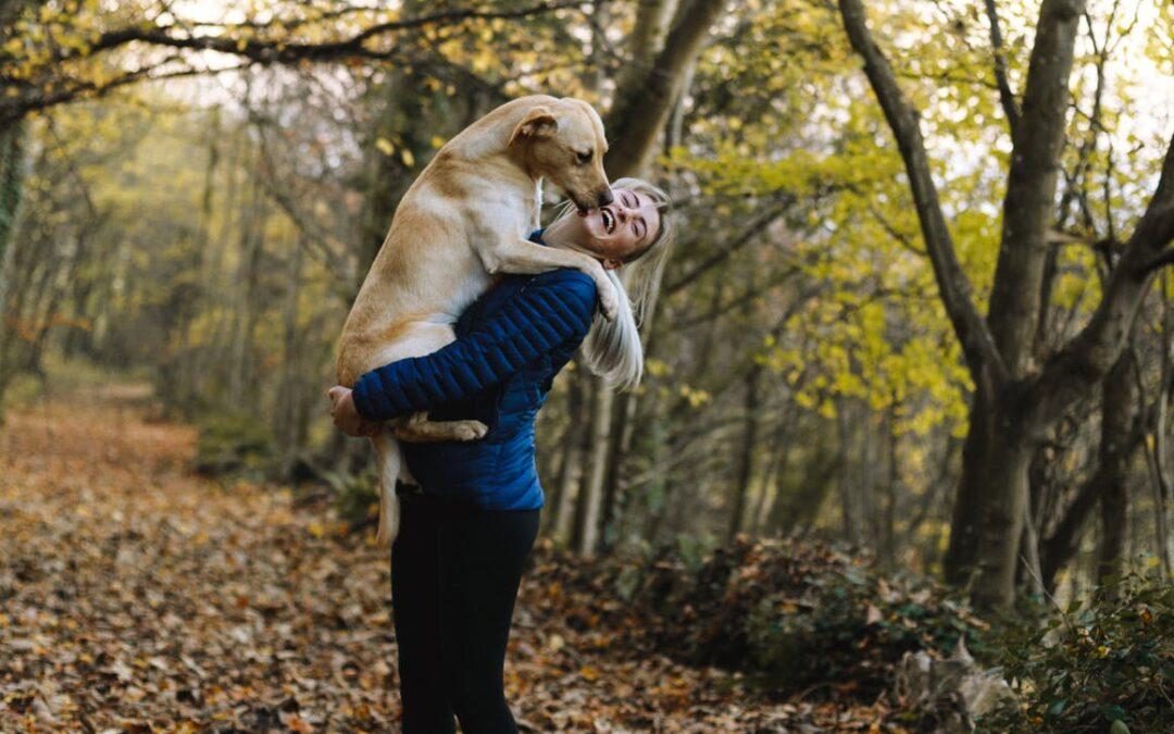 En hund kan hjælpe dig igennem svære tider
